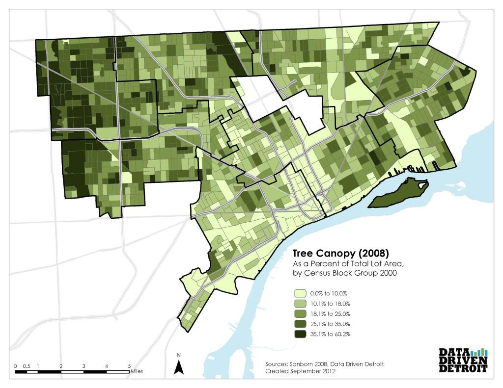 TreeCanopy2008BG2000